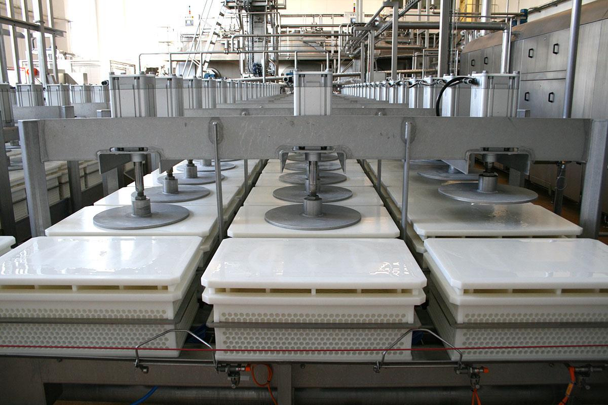 Semi-hard cheese production Open cheese press